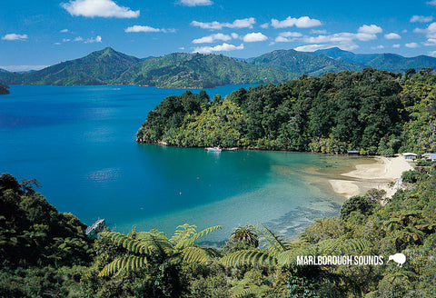 SMB646 - Becks Bay, Queen Charlotte Sound - Small Postcard - Postcards NZ Ltd