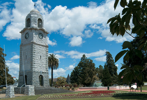 SMB652 - Clock Tower Blenheim - Small Postcard - Postcards NZ Ltd