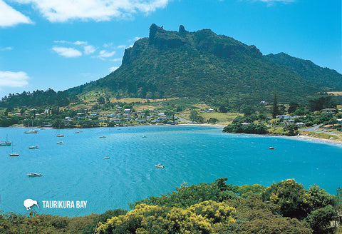 SNO704 - Taurikura Bay And Mt Manaia, Whangarei - Small Pos - Postcards NZ Ltd