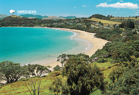 SNO786 - Coopers Beach Northland - Small Postcard - Postcards NZ Ltd