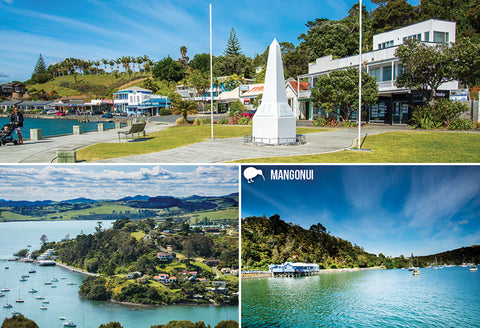SNO798 - Mangonui Multi - Small Postcard