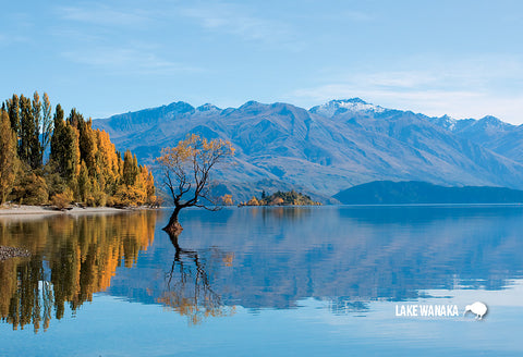 SOT400 - Central Otago, Lake Wanaka In Autumn - Small Postcard - Postcards NZ Ltd