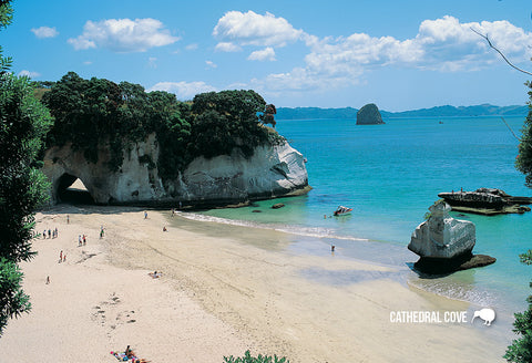 SWA547 - Cathedral Cove Mercury Bay - Small Postcard