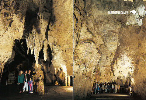 SWC969 - Cathedral Multi, Waitomo Caves - Small Postcard - Postcards NZ Ltd