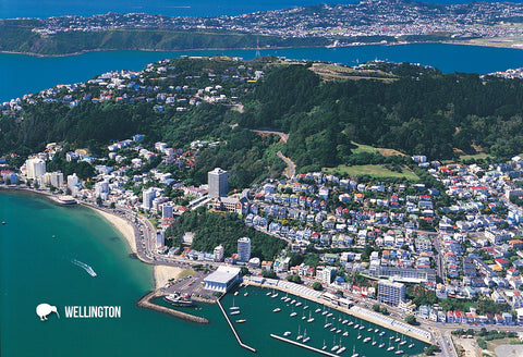SWG1004 - Oriental Bay, Wellington, Aerial - Small Postcard - Postcards NZ Ltd