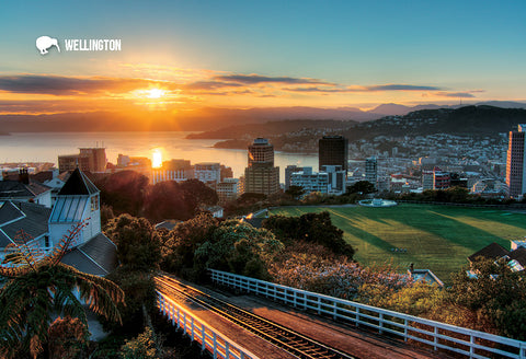 SWG982 - Wellington At Dawn - Small Postcard - Postcards NZ Ltd