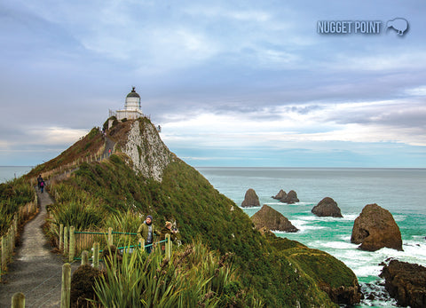 LOT204 - Nugget Point - Large Postcard - Postcards NZ Ltd