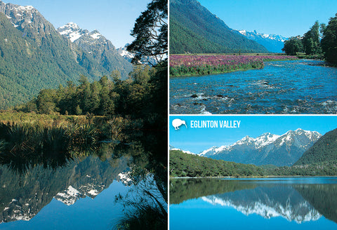 SFI65 - Eglinton Valley Fiordland - Small Postcard - Postcards NZ Ltd