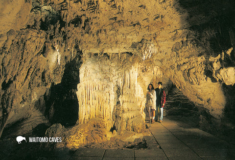 SWC960 - Organ, Waitomo Caves - Small Postcard - Postcards NZ Ltd