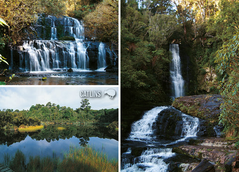 LOT203 - Catlins Multi - Large Postcard - Postcards NZ Ltd