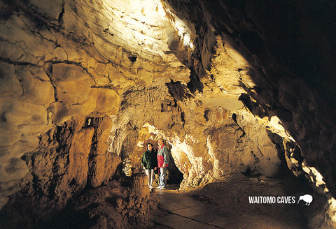 SWC964 - Gloworm Cave Access Point - Small Postcard - Postcards NZ Ltd