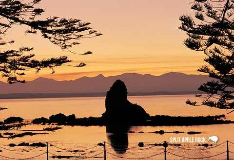 SNE727 - Sunset At Fifeshire Rock, Nelson - Small Postcard - Postcards NZ Ltd