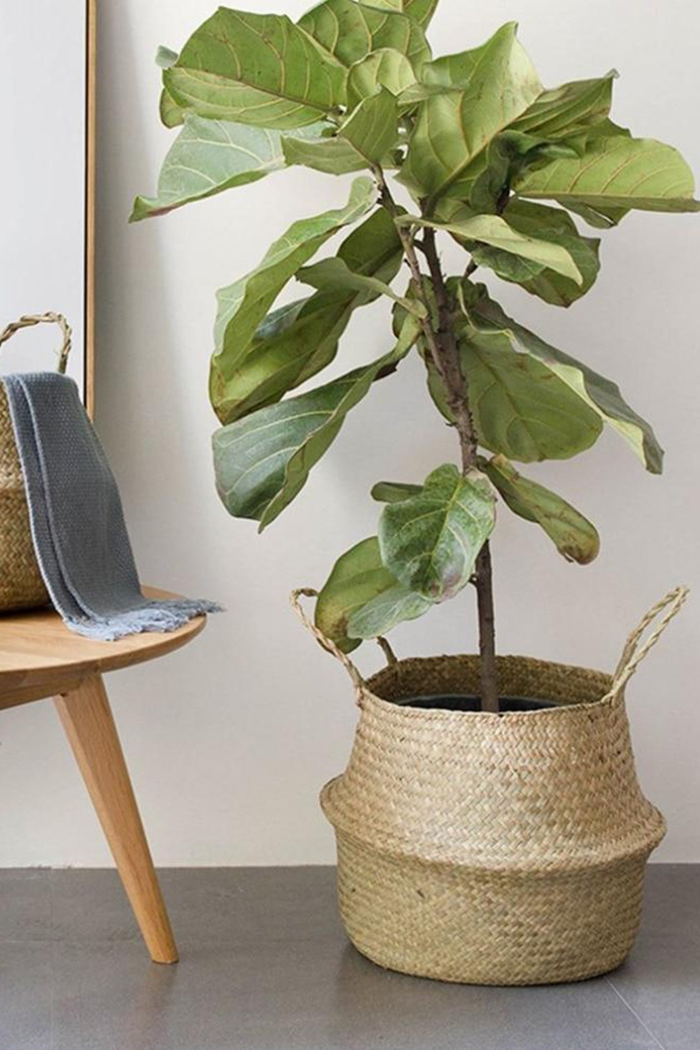 Seagrass Woven Storage Basket With Handle