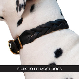 Hadleigh Braided Leather Collar