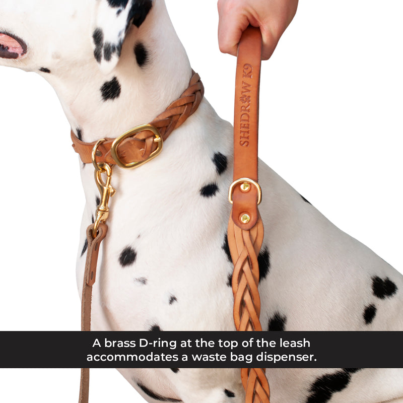 Hadleigh Braided Leather Leash
