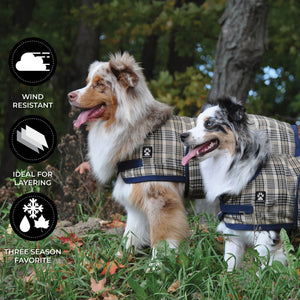 London Plaid Dog Coat