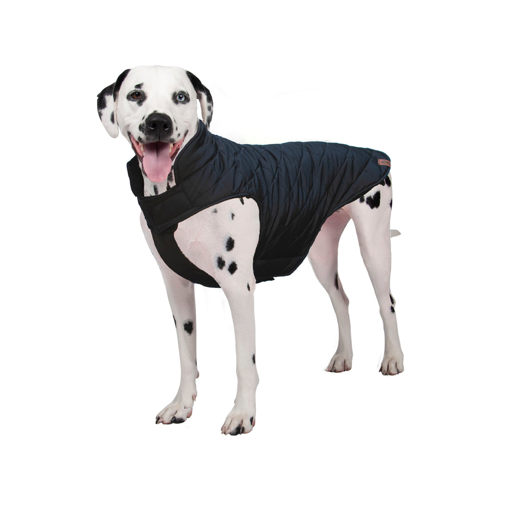 Brentwood Quilted Dog Coat