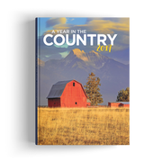 A Year in the Country (2017)