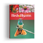 Best of Birds & Blooms (2018)