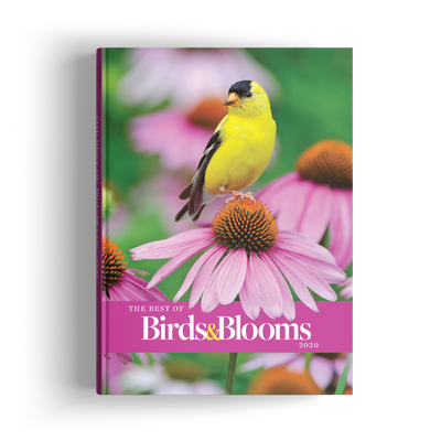 Best of Birds & Blooms (2020)