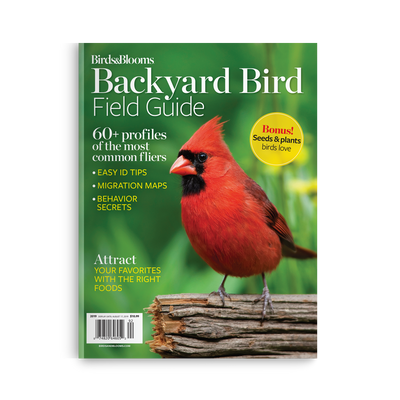 Backyard Bird Field Guide