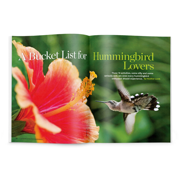 Ultimate Guide to Hummingbirds