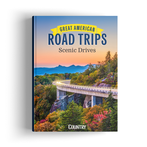 Great American Road Trips: Scenic Drives