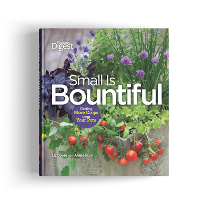 Small Is Bountiful: Getting More Crops From Your Pots