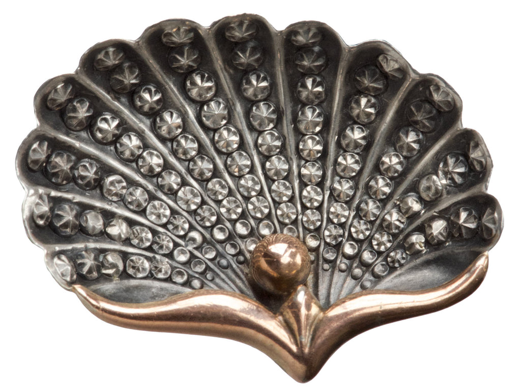 1890s French Shell Brooch