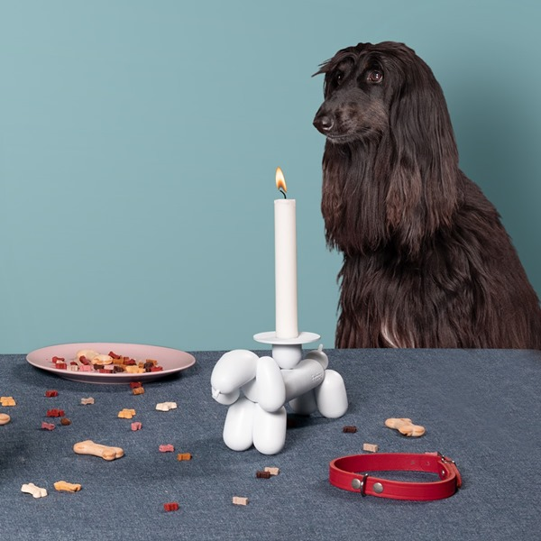 can-dog candle holder