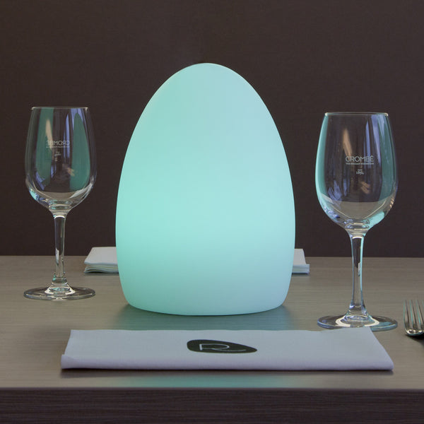 egg LED light - 21cm