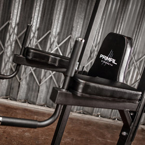 Primal Strength Stealth Primary Fitness Chin/Dip Power Tower