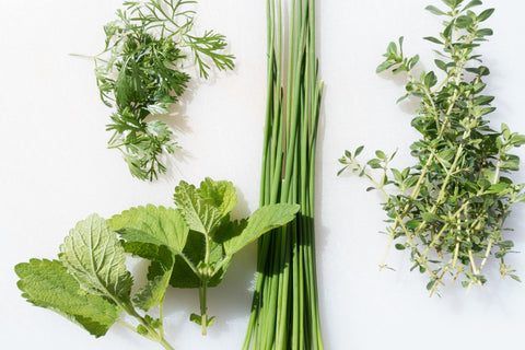 Herbs. In recent years, herbs have enjoyed something of a renaissance in the world of masculine perfume