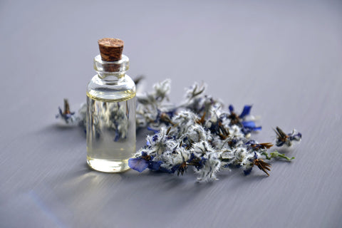 The emergence of modern scent