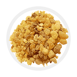 Olibanum or frankincense