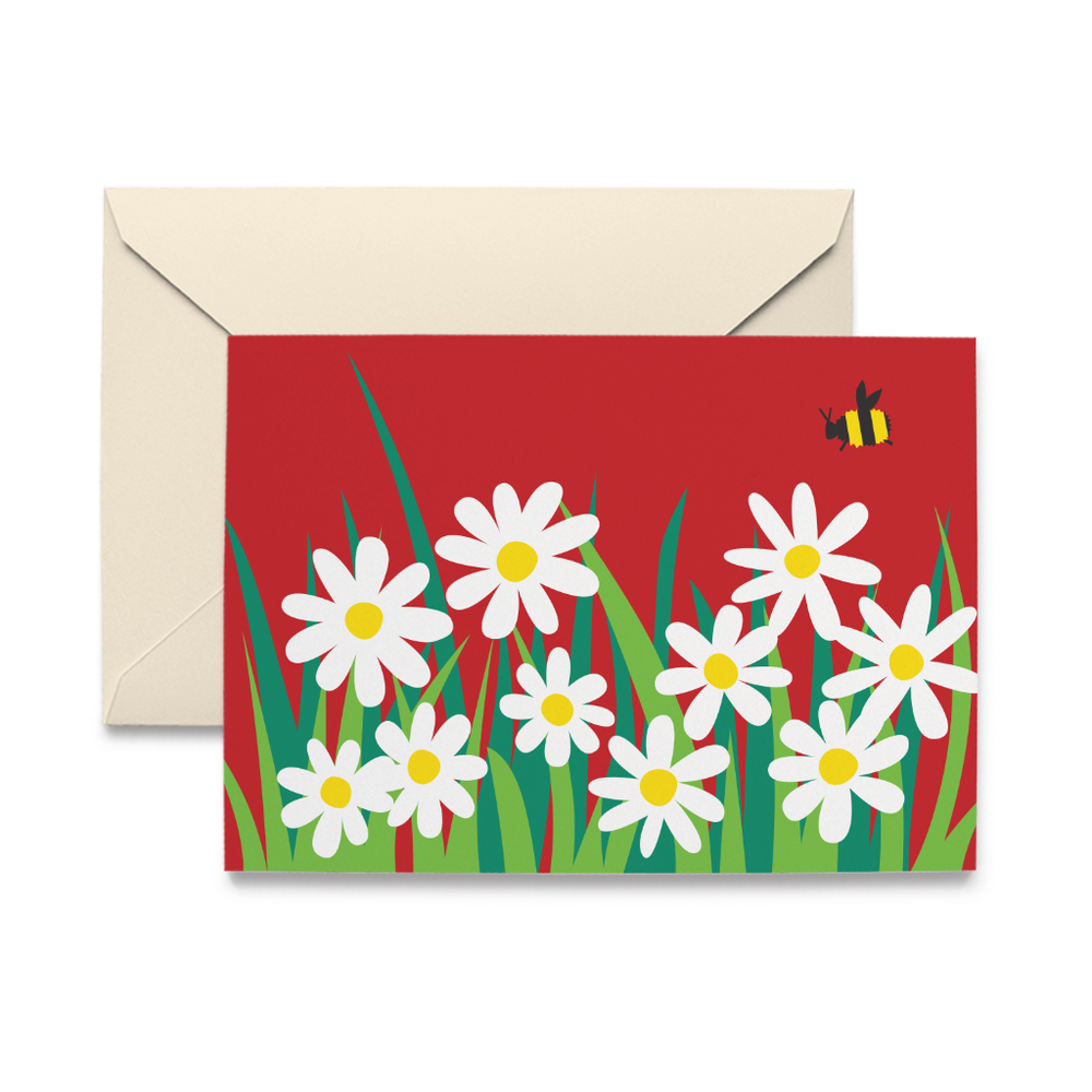 Daisies Note Cards