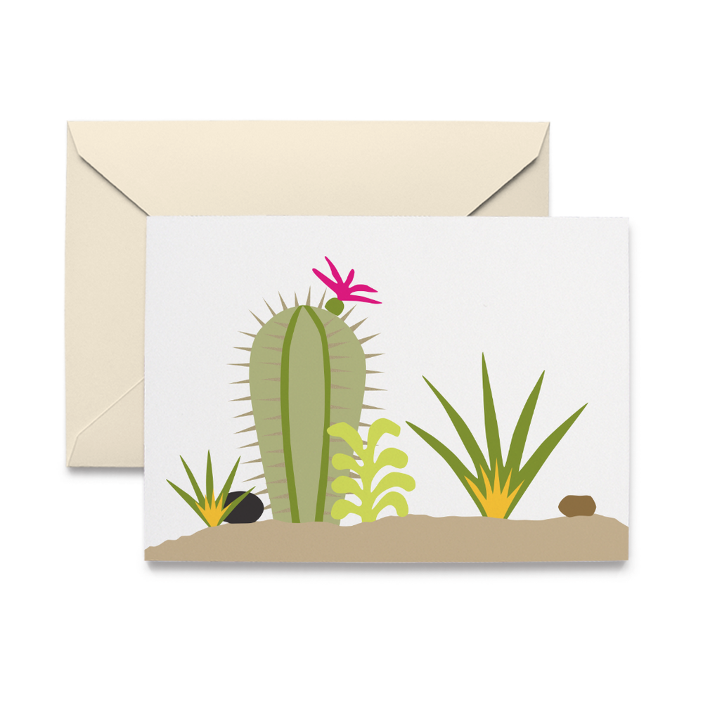 Succulents Note Cards