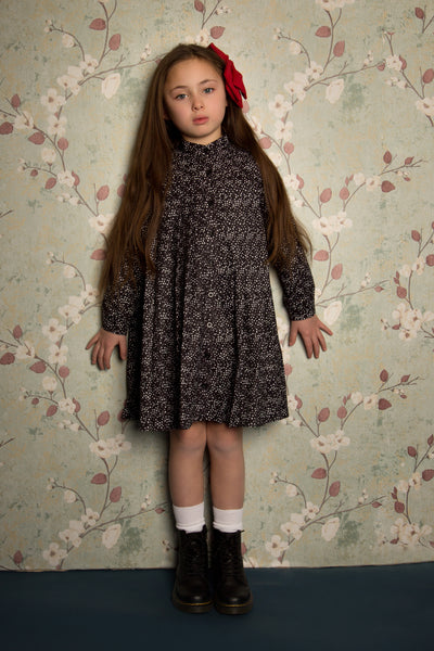 Paisley SNK1023 Pleated Dress