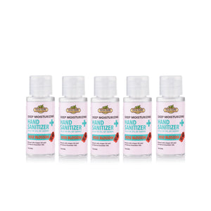 Deep Moisturizing Hand Sanitizer Scented 62% Isopropyl Alcohol 5-Pack - Fresh Farms LLC
