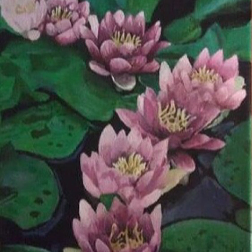 Lotus Pond by Rory Miller