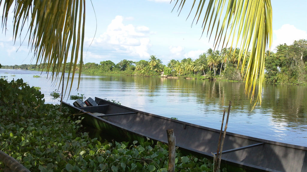Small rowboat on the shore of the Orinoco Delta