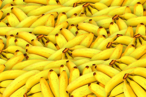 Bunch of bananas in natural light