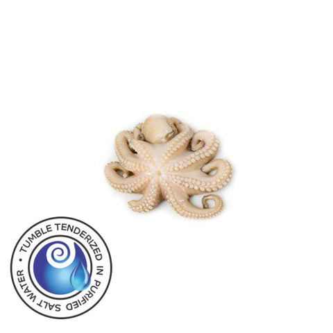 Tenderized Wild Octopus 5-10 oz (T9)