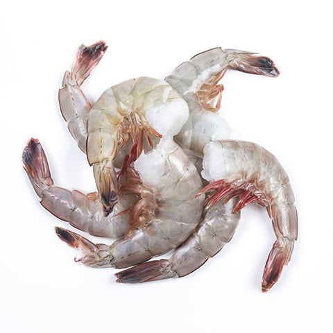 Farm Shrimp (under 12 count per lb) - 5lb Box