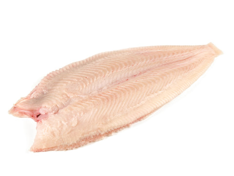 Wild Dover Sole Fillet