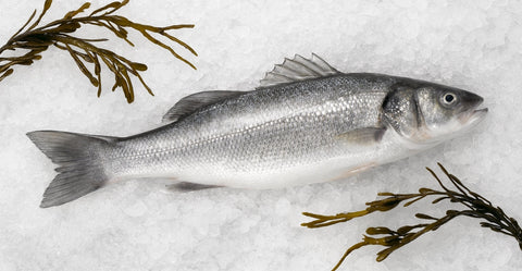 Whole Branzino 1 lbs (2 pieces)