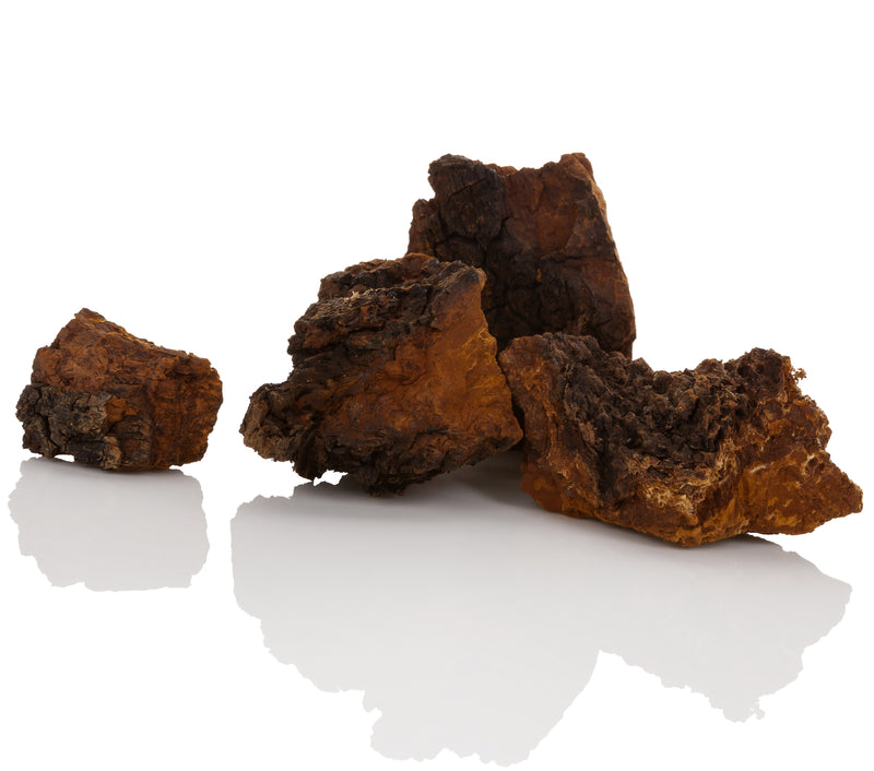Chaga Mushroom Coffee Pods For Keurig® Brewers