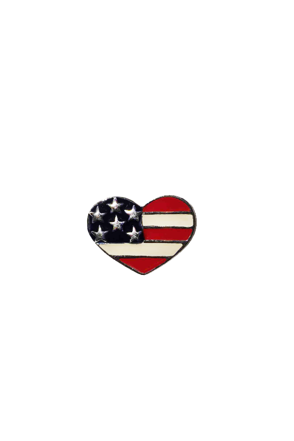 LOVE IN THE USA PIN