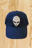 SILVER ALIEN ABDUCTION HAT