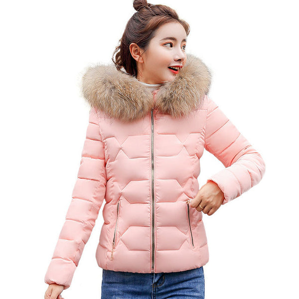 Short Jacket Winter Women Parka Mujer 2018 New Fur Collar Hooded Solid Color Cotton Down Padded Coat Femme Basic Outerwear